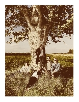 Selig - Selig bieten ersten Vorgeschmack auf neues Album