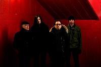 Wire - Tour 2013