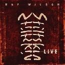 Ray Wilson, Stiltskin - Live