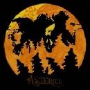 Asteroid - 2
