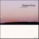 Homeslice - What is wrong with you