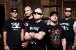 Hatebreed - Festival-Sommer im Hause HATEBREED !! [Tourdaten]