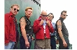 Roddy Radiation, The Stingers ATX, The Fatcats [Konzertempfehlung]