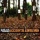 Piebald - Accidental Gentlemen [Cd]