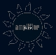 Amplifier - Insider [Cd]