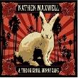 Nathen Maxwell & The Original Bunny Gang - Getrieben von Neugier [Konzertbericht]