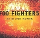 Foo Fighters - Skin And Bones [Cd]