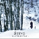 Sting - If On A Winter`s Night ...