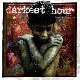 Darkest Hour - Undoing Ruin [Cd]