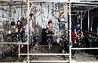 Parka - Parka - Neue Live-DVD, neues Video und Livedates [Neuigkeit]
