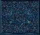 Ryan Adams - Cold Roses [Cd]
