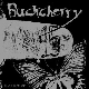 Buckcherry - 15 / Black Butterfly [Cd]