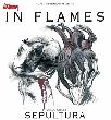 In Flames, Sepultura [Konzertempfehlung]