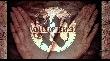 Walls of Jericho - kommen wieder auf Deutschland Tournee! [Tourdaten]