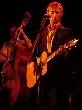 The Divine Comedy - The Divine Comedy live! [Konzertbericht]